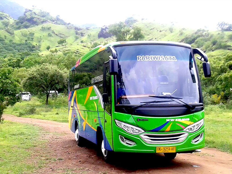 Sewa Bus Medium Murah Jakarta - STA Transport